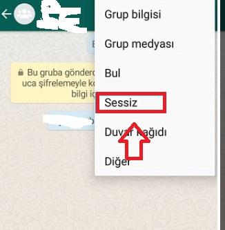 WhatsApp grup bildirimlerini kapatamıyorum, whatsapp grup sohbeti kapatamıyorum, whatsapp grup bildirimlerini kapatma, whatsapp grup bildirimleri gelmesin, whatsapp grup bildirimi ekran gözükmesin, whatsapp grup bildirimleri