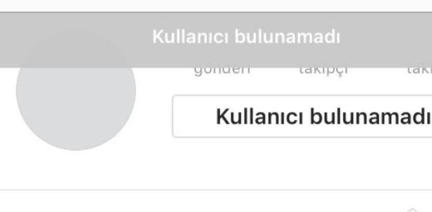 instagram kullanıcı bulunamadı diyor