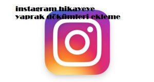 instagram hikayeye yaprak dökümleri ekleme