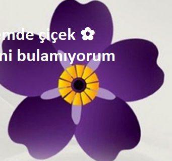 Klavyemde çiçek ✿ işaretini bulamıyorum