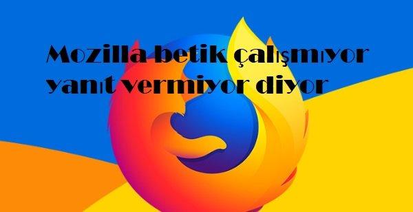 Mozilla betik çalışmıyor yanıt vermiyor diyor