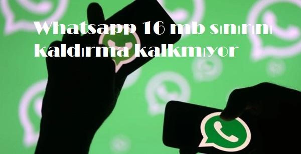 Whatsapp 16 mb sınırını kaldırma kalkmıyor