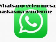 Whatsapp gelen mesajı başkasına gönderme