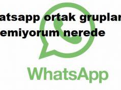 Whatsapp ortak grupları göremiyorum nerede
