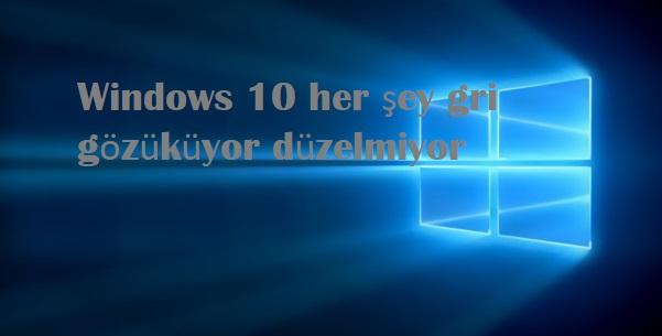 Windows 10 her şey gri gözüküyor düzelmiyor