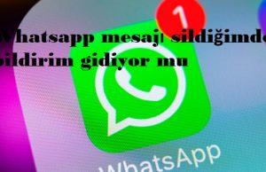 Whatsapp mesajı sildiğimde bildirim gidiyor mu