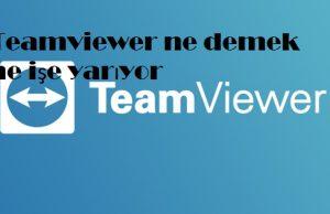 Teamviewer ne demek ne işe yarıyor