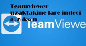 Teamviewer uzaktakine fare imleci gözüksün