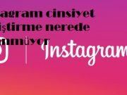 instagram cinsiyet değiştirme nerede görünmüyor