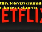 Netflix televizyonumda gözükmüyor çıkmıyor