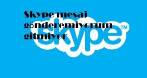 Skype mesaj gönderemiyorum gitmiyor
