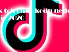 Tik tok onay kodu neden gelir 2020
