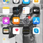 iPhone SE formatlama