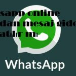 Whatsapp online olmadan mesaj gider mi veya atılır mı