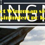 Project Wingman sistem gereksinimleri pc kaldırır mı