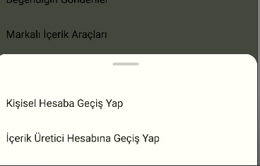 instagram müziklerde Türkçe müzik gelmiyor