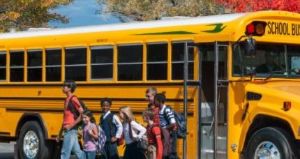 The Bus sistem gereksinimleri pc kaldırır mı