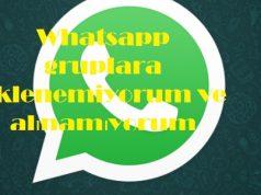 Whatsapp gruplara eklenemiyorum ve alınamıyorum