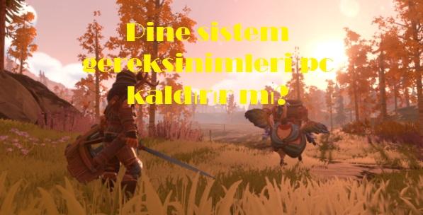 Pine sistem gereksinimleri pc kaldırır mı